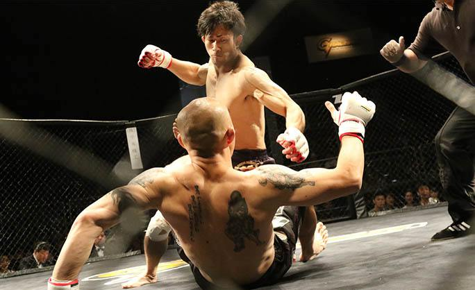MMA Mixed Martial Arts Classes