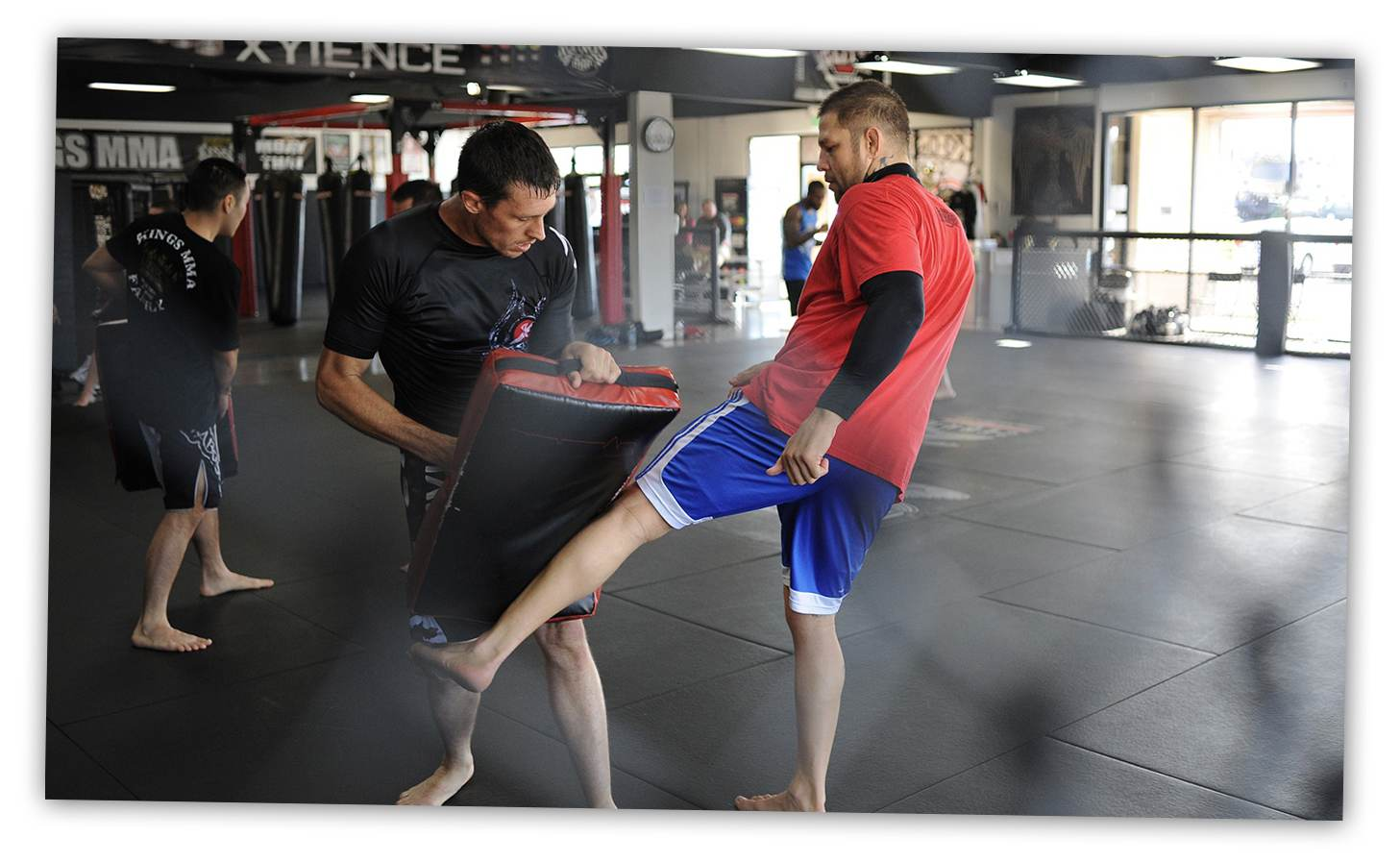 MMA Mixed Martial Arts Gym